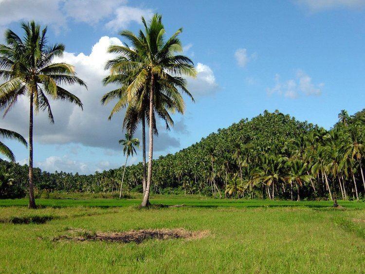 Calbayog Beautiful Landscapes of Calbayog