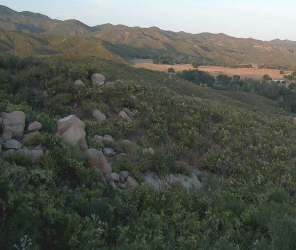 California chaparral and woodlands A description and list of California native plants that live in the