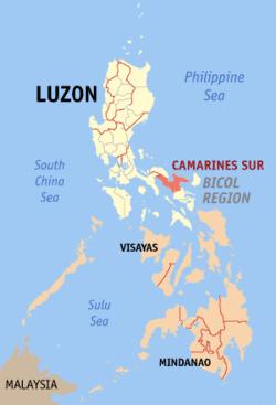 Camarines Sur Wikipedia