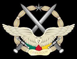 Cameroon Air Force httpsuploadwikimediaorgwikipediacommonsthu