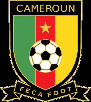 Cameroon national football team httpsuploadwikimediaorgwikipediaenee8Cam
