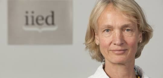 Camilla Toulmin Camilla Toulmin to step down in 2015 International Institute for