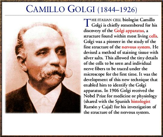 Camillo Golgi Scientists information in the world Camillo Golgi