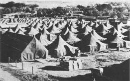 Camp Tarawa Waimea Remembers Camp Tarawa Gazette