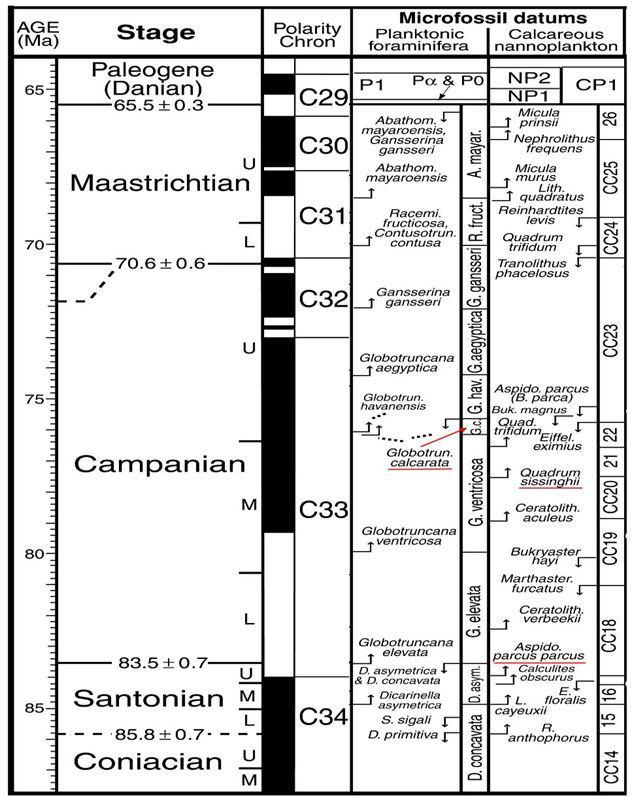Campanian kurdistangeologycomwpcontentuploads201311b