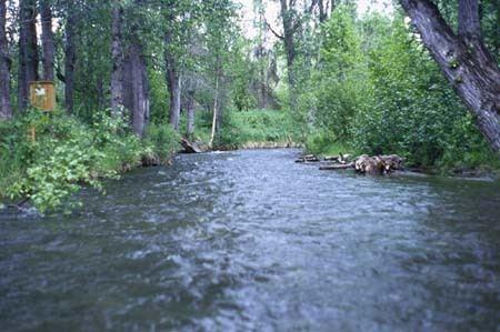 Campbell Creek (Alaska) httpsakwaterusgsgovProjectsNawqabasinsan