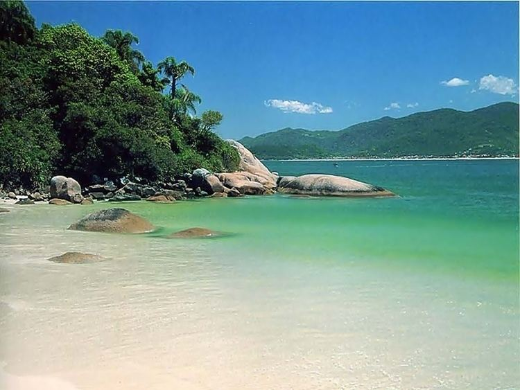 Campeche Island apinoturismocombrimguploadactivityitem3554b