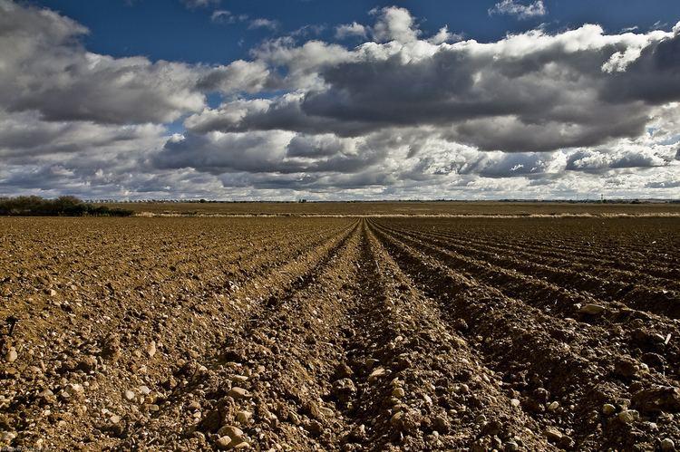 Campo arado Campo arado Grego Dvila Flickr