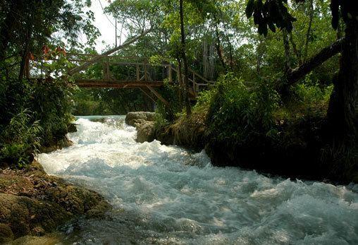 Candelaria River wwwcampechetravelwpcontentuploads201602agu