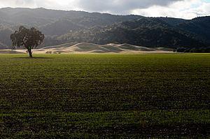 Capay Valley httpsuploadwikimediaorgwikipediacommonsthu