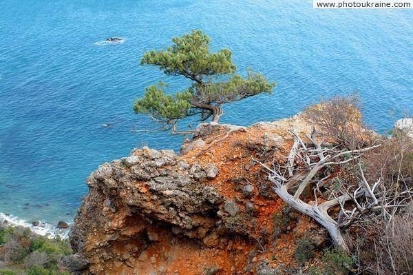 Cape Martyan Reserve imagesphotoukrainecomphotos100145jpg