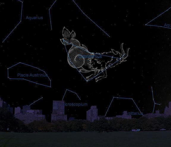 Capricornus Capricornus Constellation Facts About the Sea Goat
