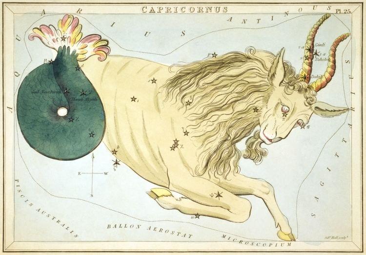 Capricornus httpsuploadwikimediaorgwikipediacommonsff