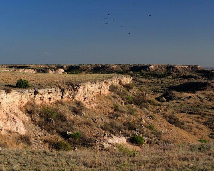 Caprock Escarpment Panoramio Photo of Vultures soar over the Cap Rock escarpment of