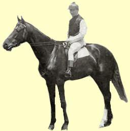 Carbine (horse) Carbine Horse Profile Champion Race Horses Race Rate