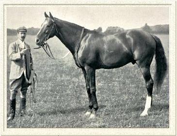 Carbine (horse) Carbine