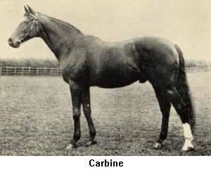 Carbine (horse) 1000 images about Trace the Bloodline on Pinterest Gold diggers