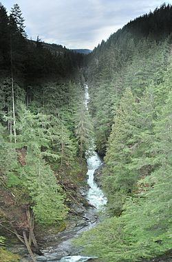 Carbon River httpsuploadwikimediaorgwikipediacommonsthu