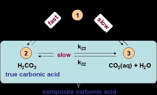 Carbonic acid Kinetics of the Carbonic Acid System