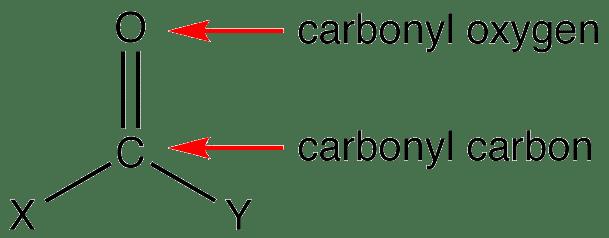 Carbonyl group Carbonyl Group OChemPal