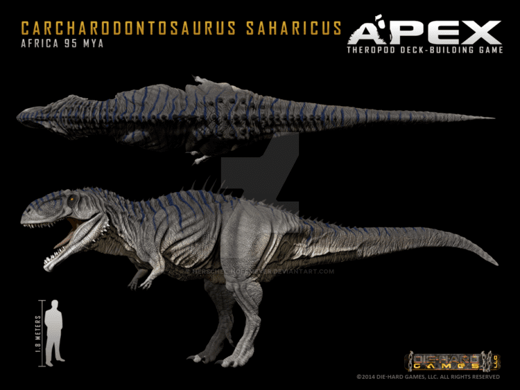 Carcharodontosaurus carcharodontosaurus DeviantArt
