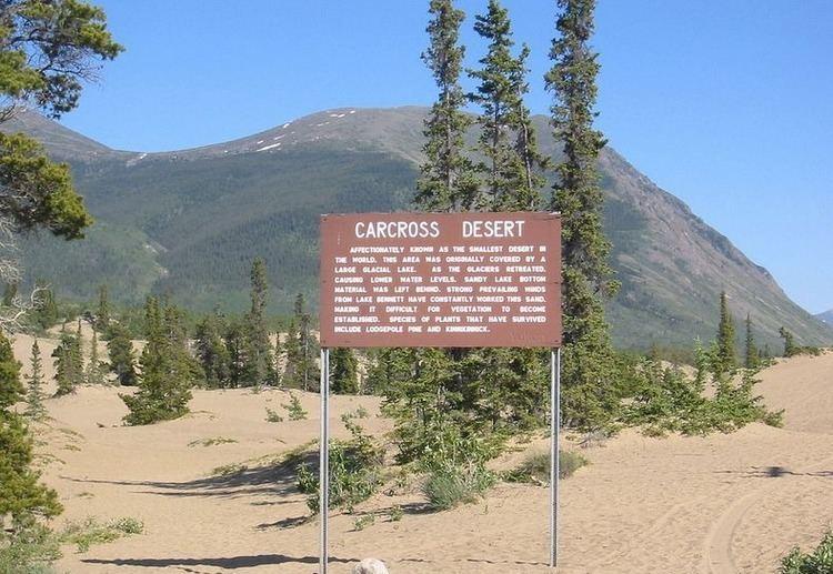 Carcross Desert 8 Deserts That Aren39t Really Deserts Amusing Planet