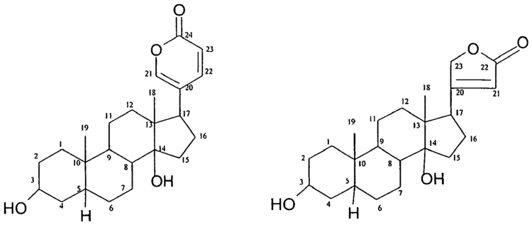 Cardenolide Patent EP2296668B1 Compositions for the treatment of hair loss