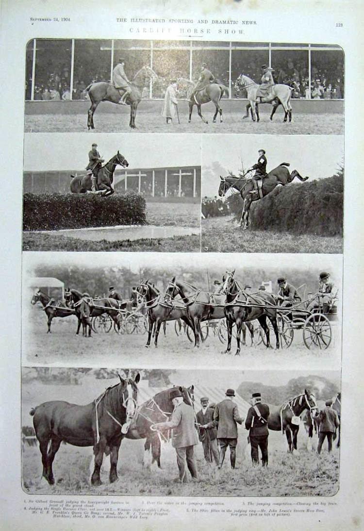 Cardiff Horse Show