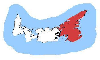 Cardigan (electoral district)