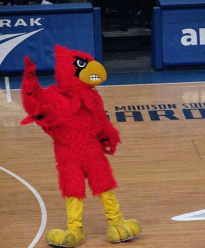 Cardinal Bird (mascot)