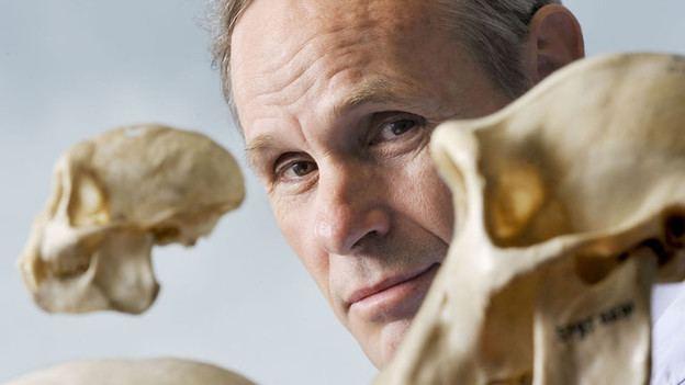 Carel van Schaik Unter OrangUtans Carel van Schaik Anthropologe