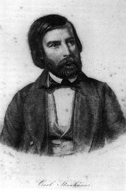 Carl Johann Steinhauser Carl Johann Steinhauser Wikipedia
