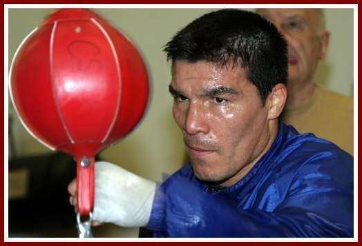 Carlos Baldomir Boxing Quotes and Photos Zab Judah Carlos Baldomir