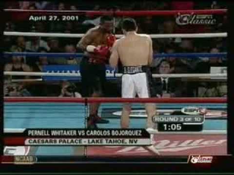Carlos Bojorquez Pernell Whitaker vs Carlos Bojorquez YouTube