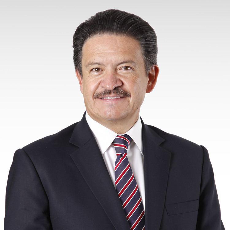 Carlos Navarrete Ruiz httpsuploadwikimediaorgwikipediacommonsdd