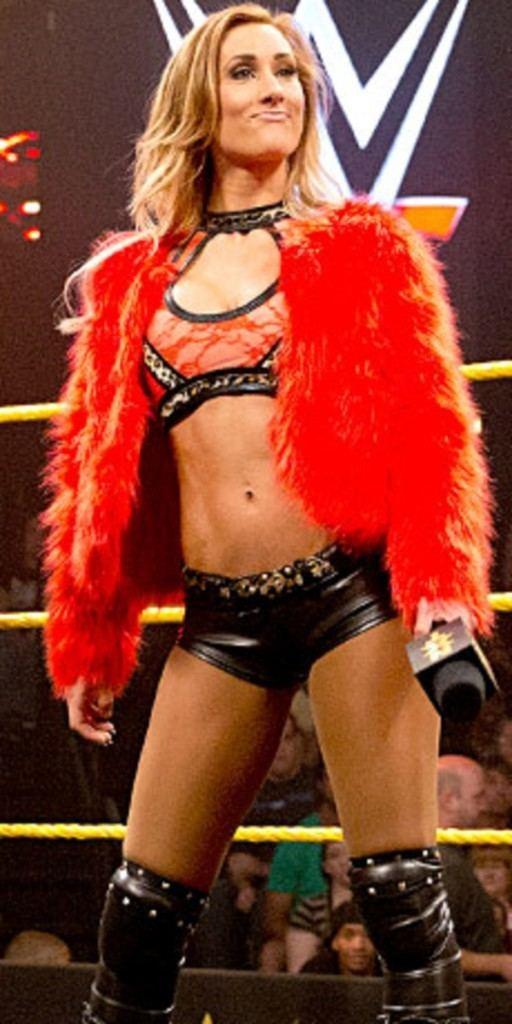 Carmella (wrestler) NXT Divas 2014 in Review in General Discussion topics Forum