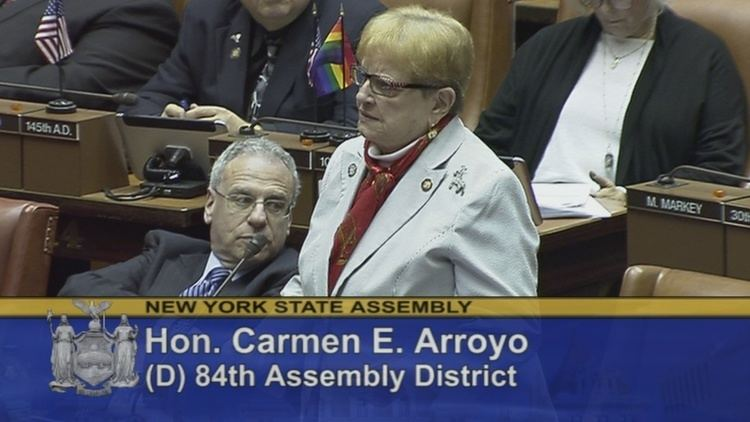 Carmen E. Arroyo New York State Assembly Carmen E Arroyo
