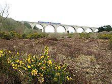 Carnon viaduct httpsuploadwikimediaorgwikipediacommonsthu