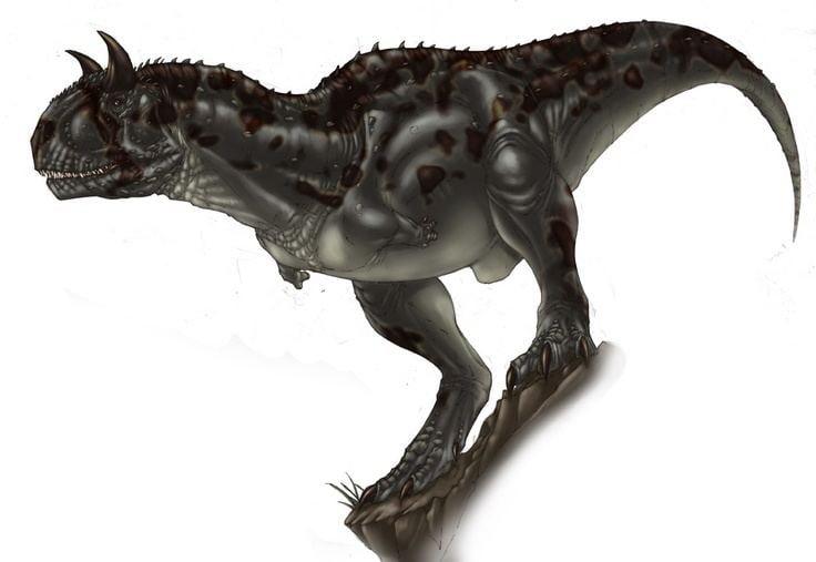 Carnosauria Carnosauria Carnotaurus sastrei Dinosaurs Pinterest Patagonia