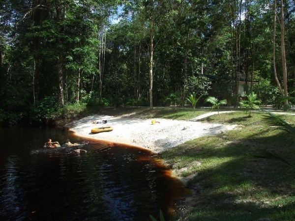 Carolina, Suriname wwwoversurinamenlimagesverybig20100801jweofxjpg