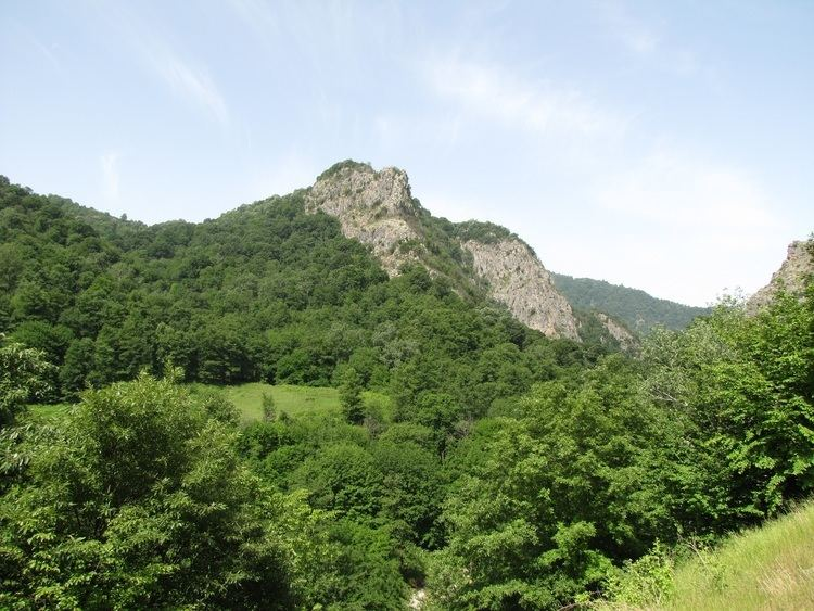 Caspian Hyrcanian mixed forests Building a MultipleUse Forest Management Framework to Conserve