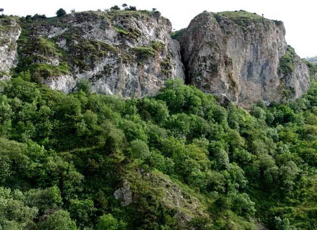 Caspian Hyrcanian mixed forests Armeno iranian zone