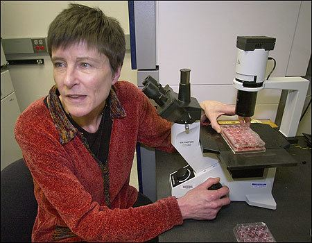 Catherine Verfaillie From adult stem cells comes debate The Boston Globe