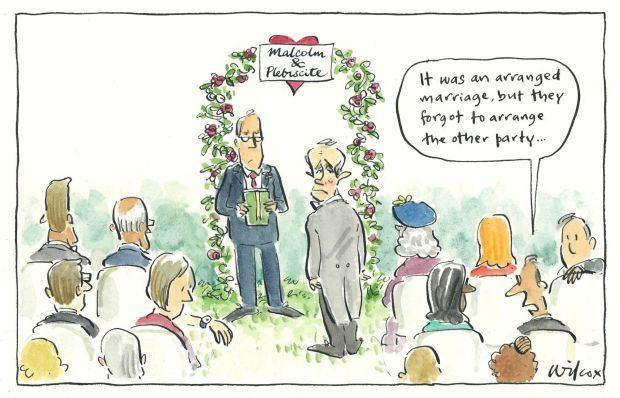 Cathy Wilcox Best of Fairfax cartoons Aug 30