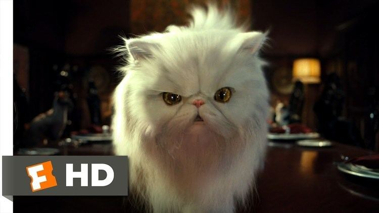 Cats %26 Dogs movie scenes Cats Dogs 2 10 Movie CLIP Mr Tinkles 2001 HD