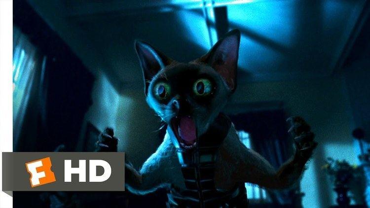 Cats %26 Dogs movie scenes Cats Dogs 3 10 Movie CLIP Ninja Cats 2001 HD