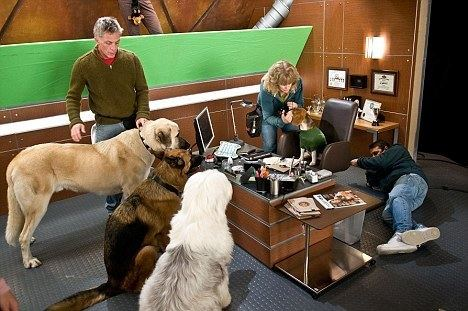 Cats %26 Dogs: The Revenge of Kitty Galore movie scenes All in a day s work Animal handler Boone Narr left helps with a