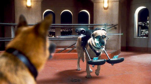 Cats %26 Dogs: The Revenge of Kitty Galore movie scenes Cats Dogs The Revenge of Kitty Galore Picture 35