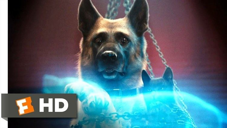Cats %26 Dogs: The Revenge of Kitty Galore movie scenes Cats Dogs The Revenge of Kitty Galore 6 Movie CLIP Kitty s Evil Plan 2010 HD