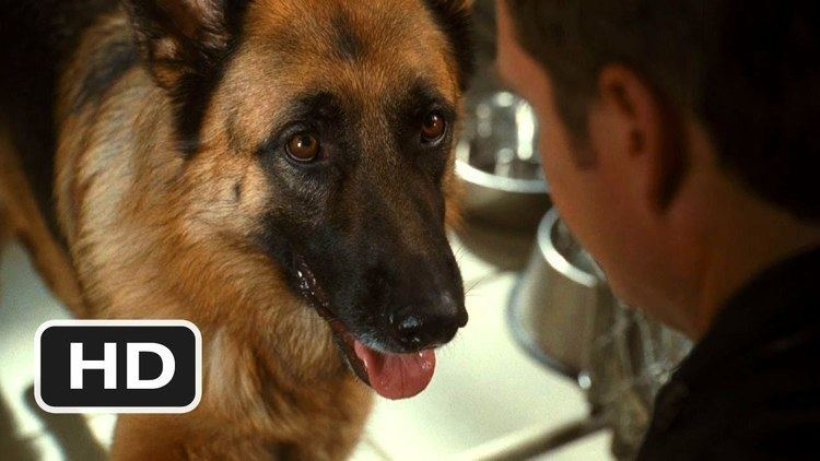 Cats %26 Dogs: The Revenge of Kitty Galore movie scenes Cats Dogs The Revenge of Kitty Galore 1 Movie CLIP Doggy Jail 2010 HD
